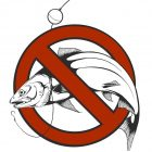 Забрана за риболов на пъстърва