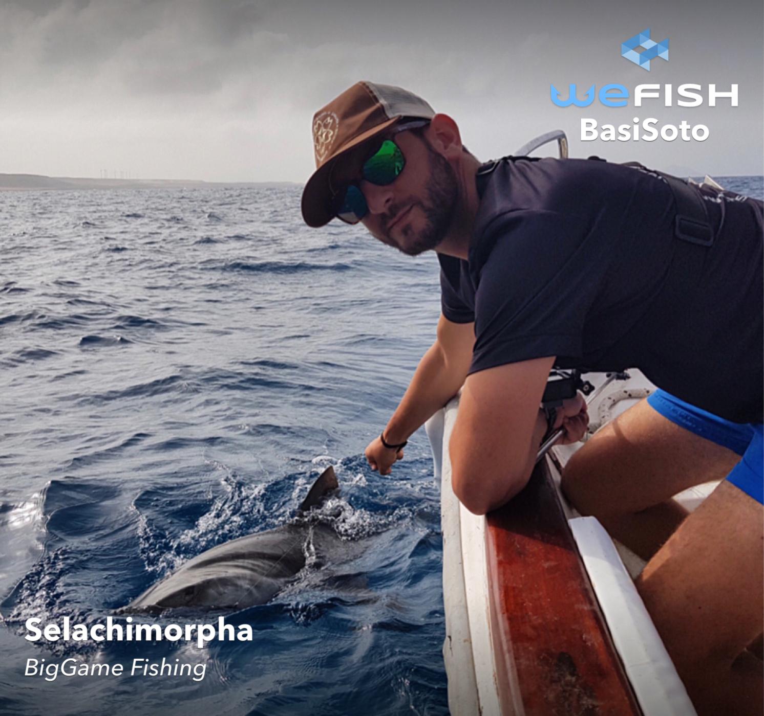 Акула, уловена от дълбоководен риболов