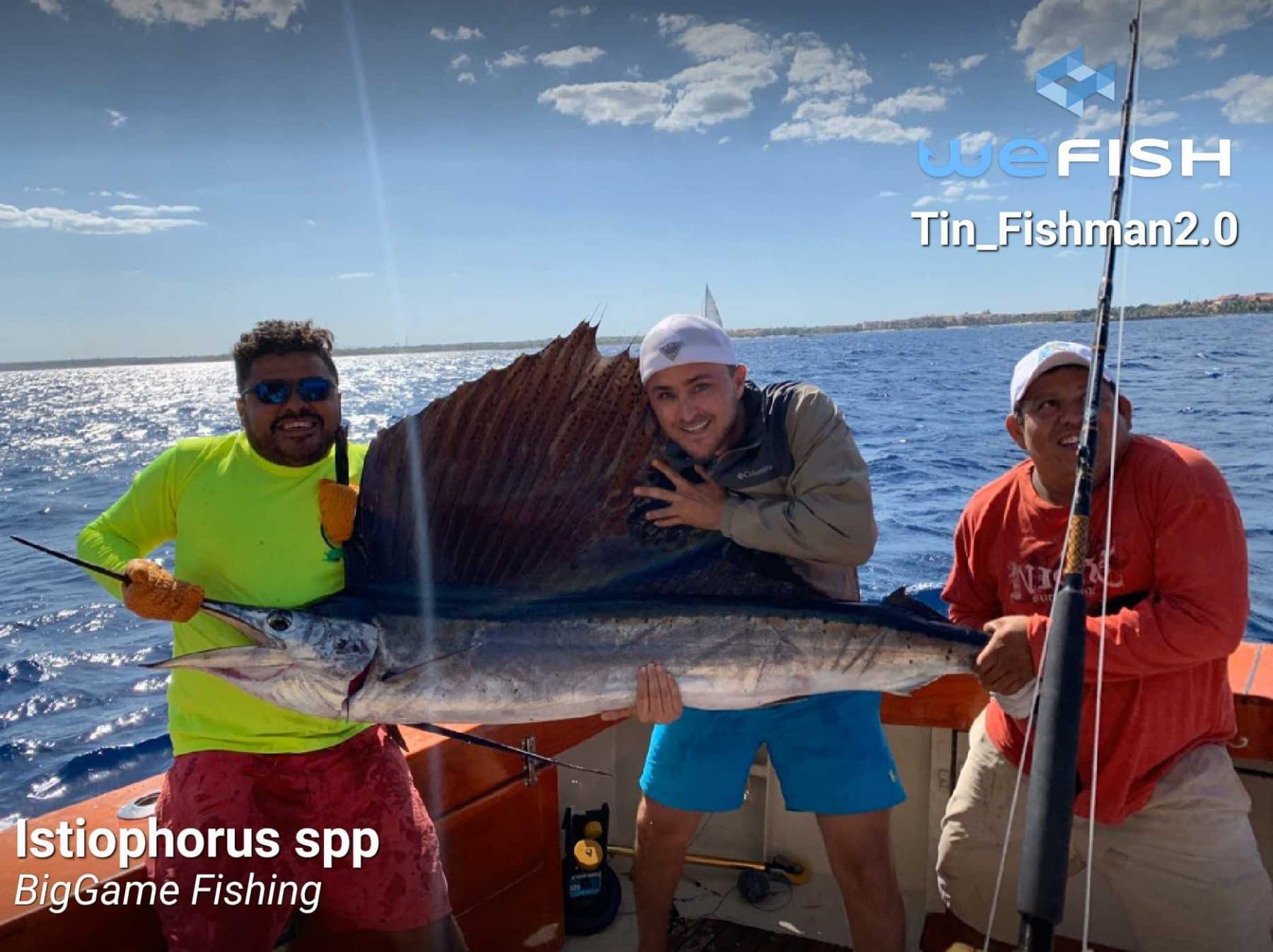 улов на ветроходка чрез дълбоководен риболов