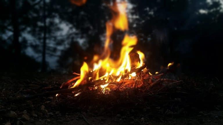 риба на лагерен огън